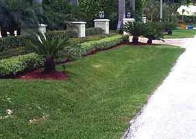 This image shows a swale that is used for collecting stormwater. The image shows that swales can look nice in front of houses.